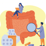 Intestino, o nosso 2º cérebro